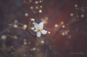 Фото Феодосии #7582