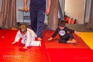 Детский фестиваль по дзюдо #8535