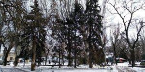 t -5 ,Снежок 08.02.20 #15218
