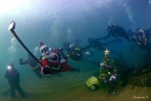 Фото новогодней елки на дне моря в Феодосии #6380