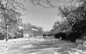 Снежный Крым #14722