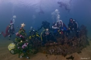 Фото новогодней елки на дне моря в Феодосии #6379