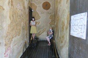Музей Грина возобновил деятельность #15264