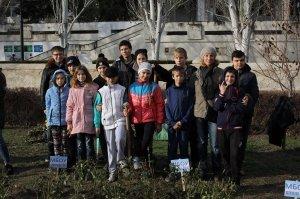 Фото высадки роз на набережной Феодосии #6201