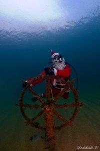 Фото новогодней елки на дне моря в Феодосии #6428