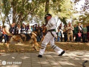 Выставка собак КРАСА КАФЫ в Феодосии #5160