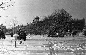 Снежный Крым #14723