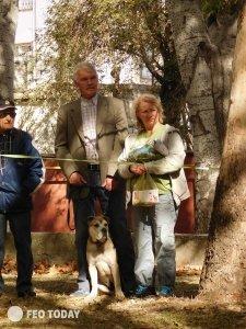 Выставка собак КРАСА КАФЫ в Феодосии #5164