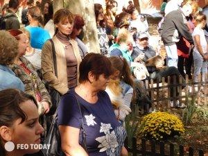 Выставка собак КРАСА КАФЫ в Феодосии #5149