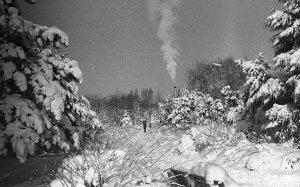 Снежный Крым #14729