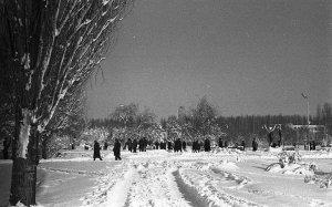 Снежный Крым #14721
