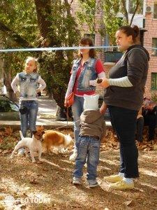 Выставка собак КРАСА КАФЫ в Феодосии #5170