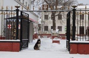 Зима в Феодосии, 2018 #6667