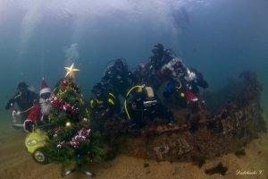 Фото новогодней елки на дне моря в Феодосии #6382