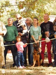 Выставка собак КРАСА КАФЫ в Феодосии #5165