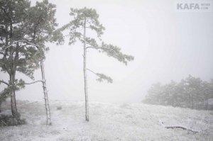 Первый снег в Феодосии #14535