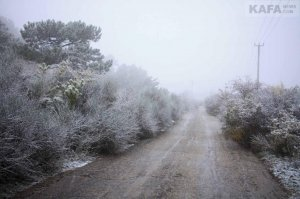 Первый снег в Феодосии #14536