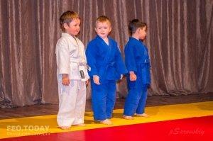 Детский фестиваль по дзюдо #8526