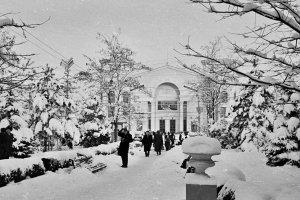Снежный Крым #14720