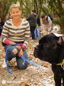 Выставка собак КРАСА КАФЫ в Феодосии #5154