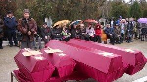 Фото траурной церемонии захоронения останков 35 бойцов Крымского фронта #6178