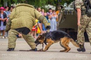 День пограничника в Феодосии #11678
