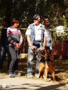 Выставка собак КРАСА КАФЫ в Феодосии #5162