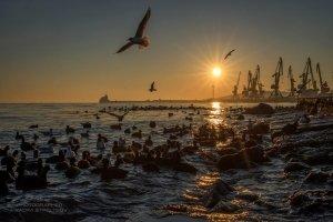 Фото Феодосии #7092
