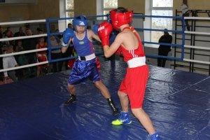 Фото XXI Республиканского турнира по боксу памяти Ефимова В.Ф в Феодосии #5713