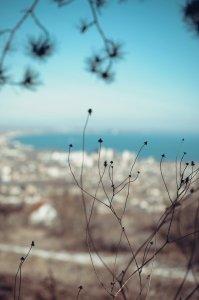 Фото Феодосии #4018