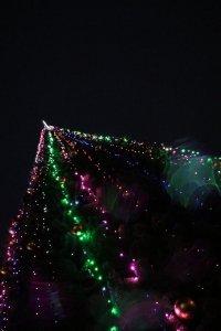 Фото торжественного открытия новогодней ёлки в Феодосии #6297